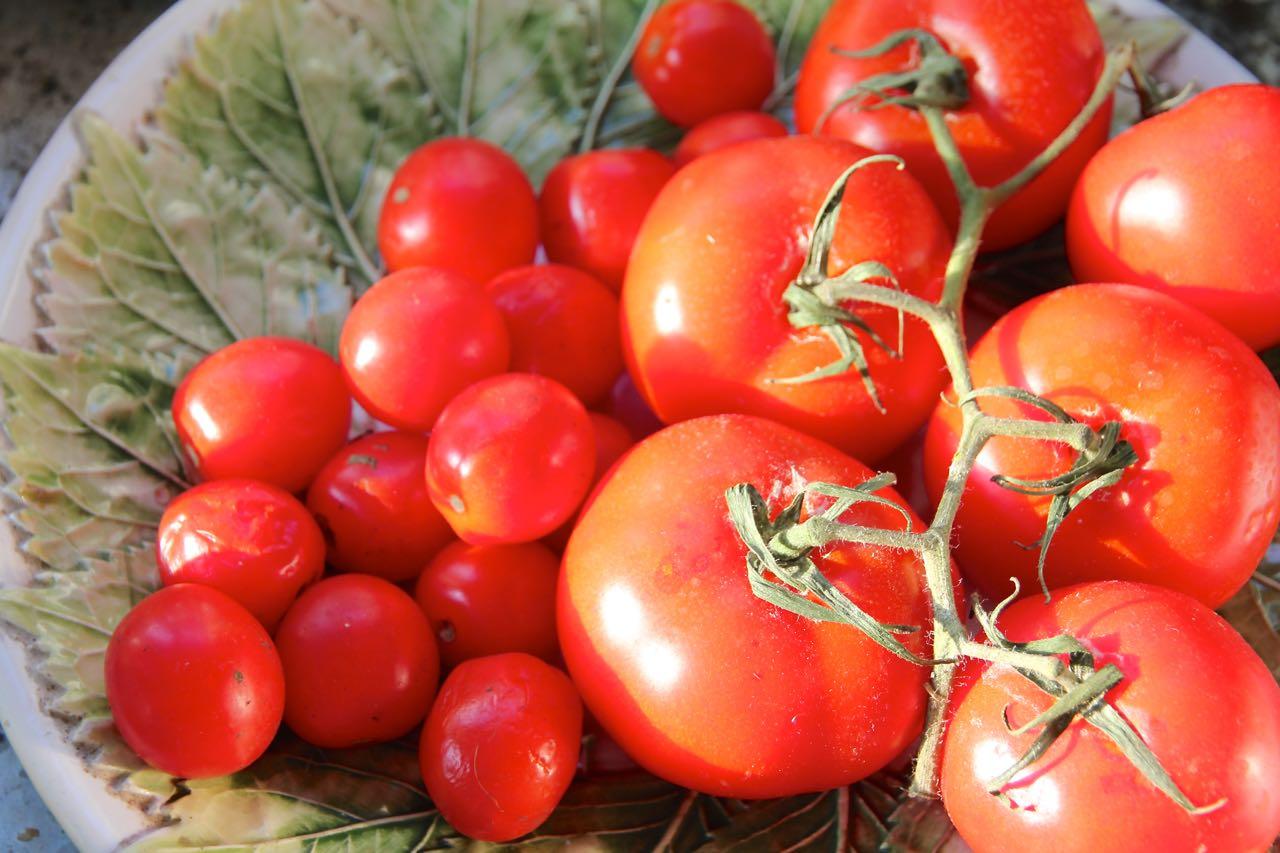 Cherry Tomaten Labsalliebe