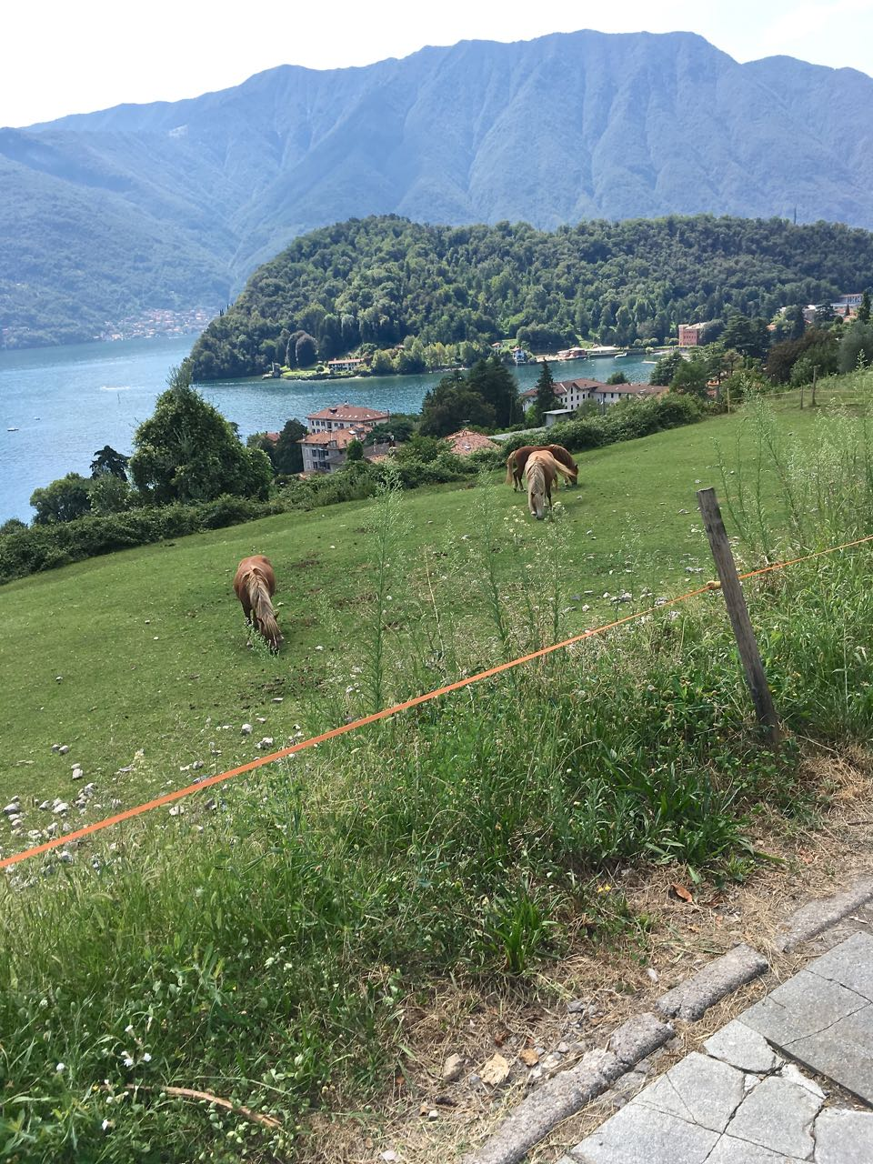 Greenway del Lago am Comer See Labsalliebe