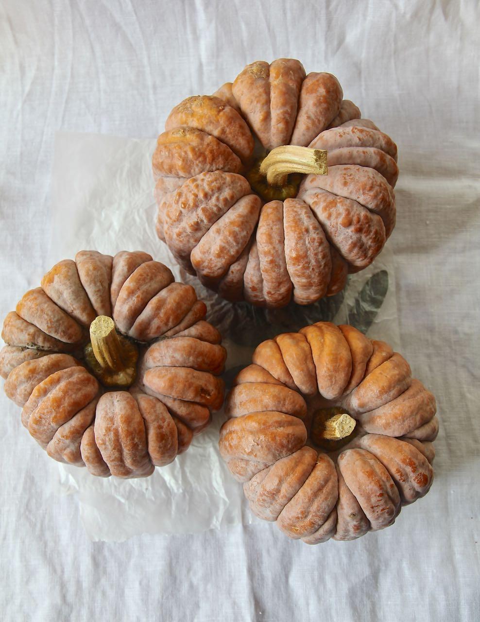 Orientalisch gefüllter Kürbis aus dem Ofen - Futsu Küribs Labsalliebe